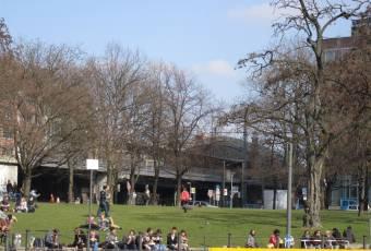 Klassenfahrtenfuchs - Klassenfahrten Berlin - Erste Frühlingssonnenstrahlen
