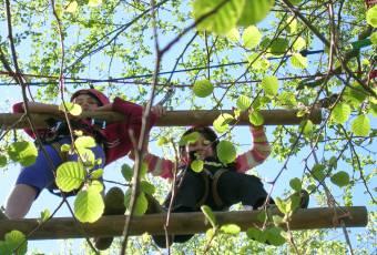 Erlebnispädagogische Klassenfahrt Prieros - Teamtraining - Klassenfahrtenfuchs - Teamseilgarten