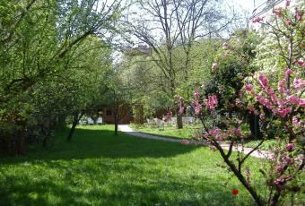 Klassenfahrtenfuchs Klassenfahrt Potsdam - Frühling-Garten