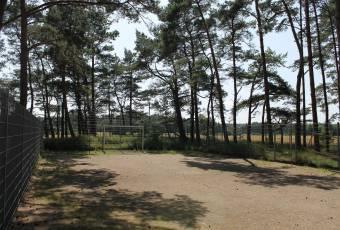 Klassenfahrtenfuchs Klassenfahrt Boddenküste - Fußball- & Volleyballplatz