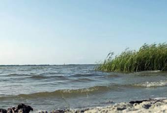 Klassenfahrtenfuchs - Klassenfahrt Darßer Boddenküste - Strand am Bodden