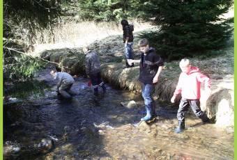 Klassenfahrtenfuchs - Klassenfahrt Altenau - Bachlauf mit Kindern